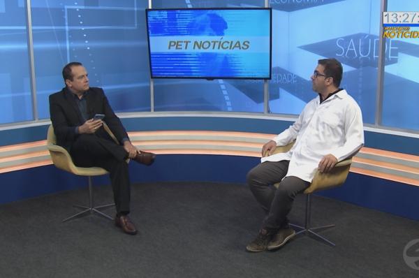 pet noticias apresentador e veterinario